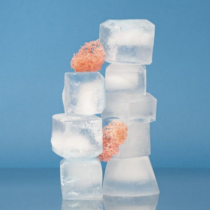 Ice Makers - Know Before You Buy
